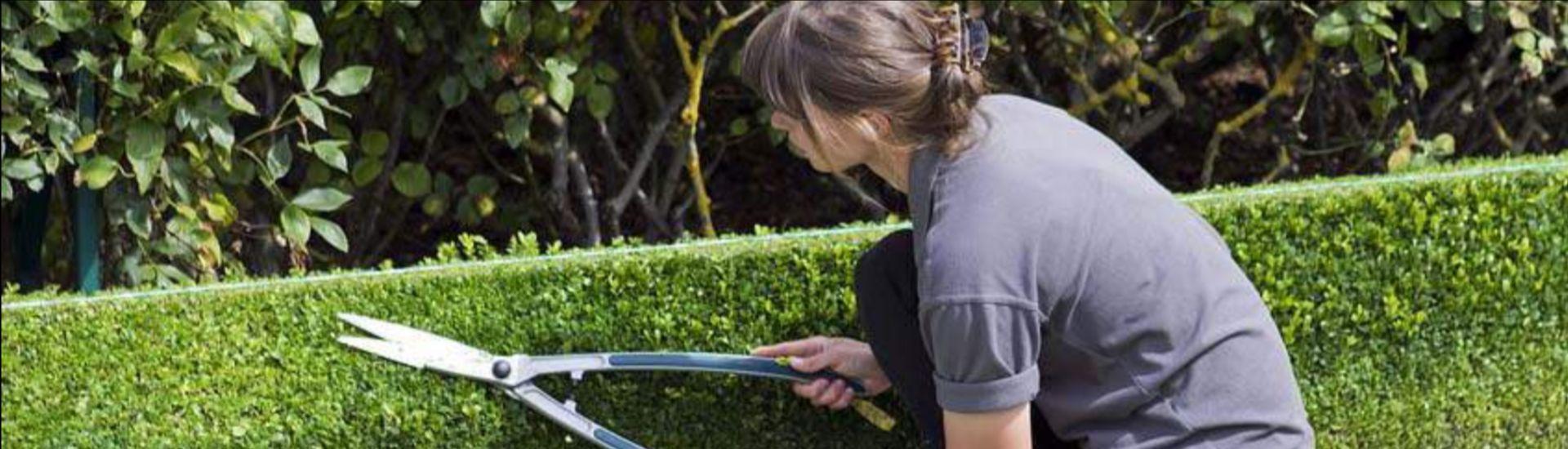 Servide de jardinage et bricolage ADMR Tarn